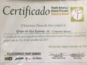 Certificado de Participação da Delegação Brasileira de 2008